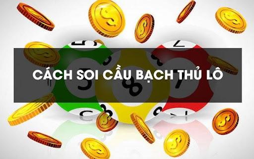 Soi-cau-bach-thu