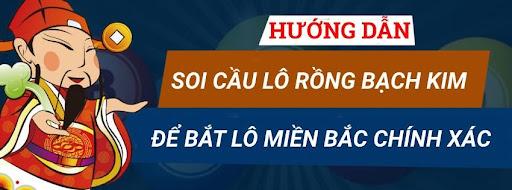 Soi-cau-lo-Rong-bach-kim